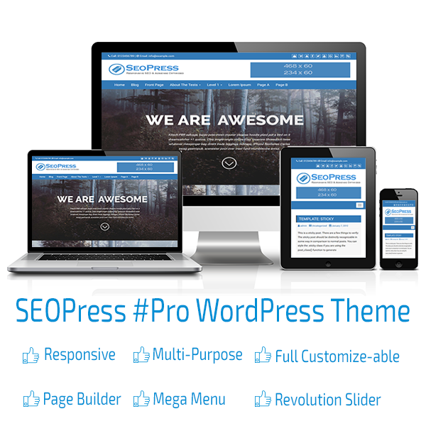 SEOPRESS PRO WORDPRESS THEME